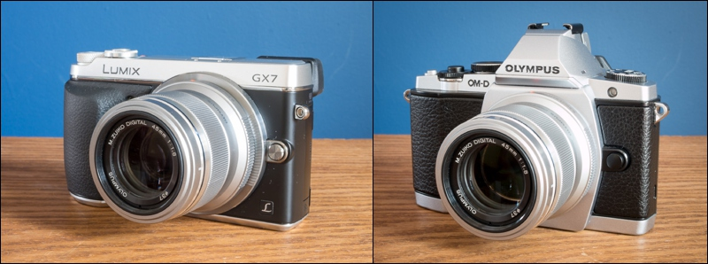 I've used the Olympus 45mm f/1.8 on both my Olympus OM-D E-M5 and my Panasonic GX7 (the beauty of micro four thirds!)